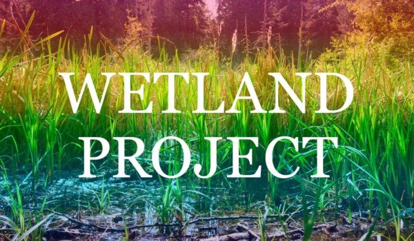 Featured Image for Wetland Project courtesy of   | CJRU