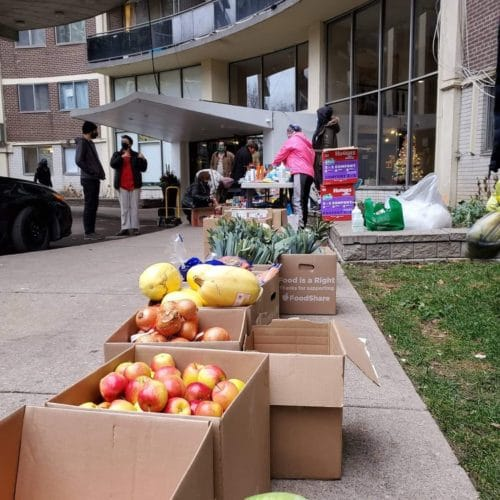 boxes of donated food, lined up on the sidewalk leading up to the West Lodge apartment building.