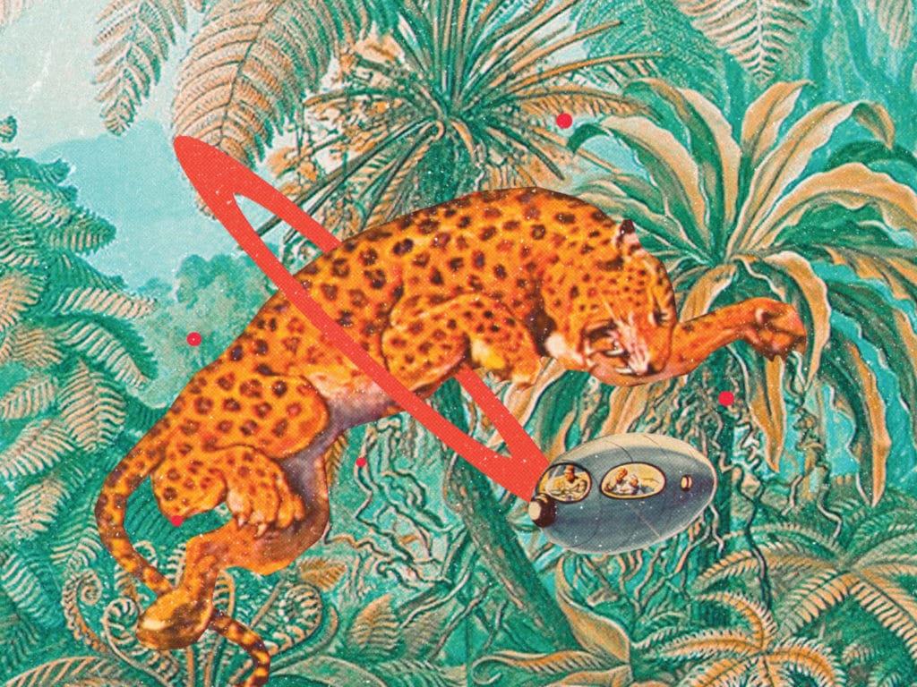 A Leopard jumping through the jungle, through a red ring created by a spaceship. Nubiyan Twist - Freedom Fables